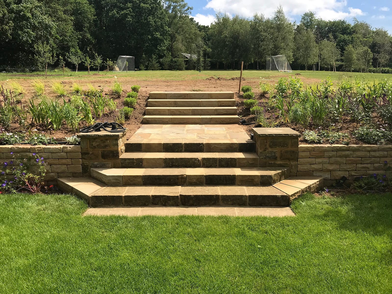 Bushy Business - Surrey Hills Garden; Surrey Hills